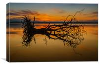 Loch Leven Tree Tinted, Canvas Print