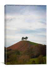 Colmer Hill, Canvas Print