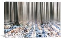 Winter Woods, Canvas Print