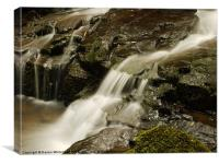 Waterfall in Spring 10, Canvas Print