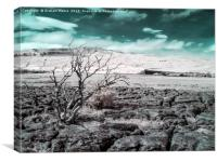 Ribblehead Viaduct infrared, Canvas Print