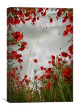 Red 9 , Canvas Print