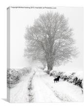 Winter Lane, Canvas Print
