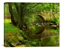River Bovey at North Bovey,Dartmoor, Canvas Print