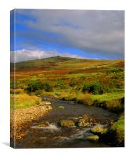 River Lyd Looking Towards Great Links Tor, Canvas Print