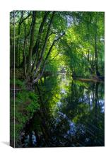 Beeley Wood & River Don in Sheffield, Canvas Print