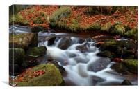 Autumn In Padley Gorge, Canvas Print