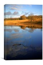 Longshaw Tranquility, Canvas Print