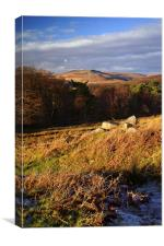 Longshaw View across Burbage Valley 2, Canvas Print