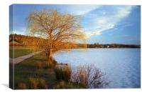 Rother Valley Country Park, Canvas Print