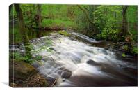Little London Weir, Rivelin, Canvas Print