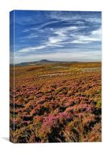 Win Hill & Derwent Moor, Canvas Print
