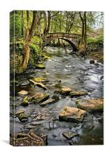 River Rivelin & Roscoe Bridge, Canvas Print