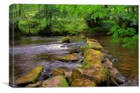 River Derwent Stepping Stones , Canvas Print