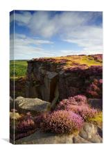 Heather on Burbage Rocks, Canvas Print