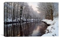 River Don in Winter , Canvas Print