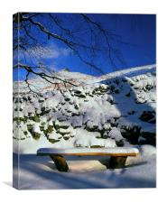 Ringing Roger and Bench in the Snow, Canvas Print