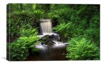 Upper Coppice Wheel, Rivelin, Canvas Print