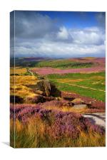 Burbage Rocks and Valley , Canvas Print