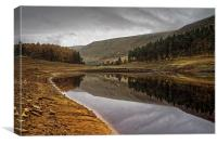 Howden Autumn Reflections , Canvas Print