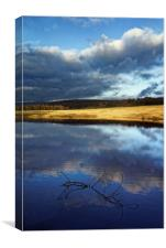 Longshaw Reflections, Canvas Print