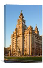 Royal Liver Building at Sunset                    , Canvas Print