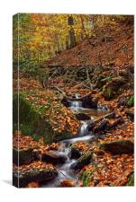 Porter Clough in Autumn                           , Canvas Print