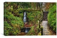 Ninesprings Country Park, Yeovil                  , Canvas Print