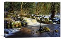 Third Coppice Weir, Rivelin                       , Canvas Print