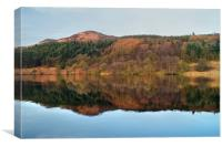 Ladybower Reflections , Canvas Print