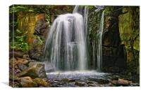Lumsdale Falls in Summer                      , Canvas Print