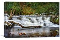 Third Coppice Weir, Rivelin, Sheffield            , Canvas Print