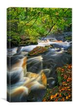 River Rivelin                      , Canvas Print