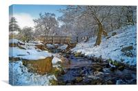 Burbage Brook in Winter                      , Canvas Print