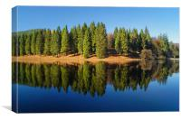 Derwent Inlet Reflections                     , Canvas Print