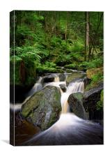 Wyming Brook Falls                          , Canvas Print