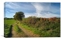 Footpath to Bounds Lane                      , Canvas Print