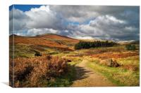 Footpath to Higger Tor                       , Canvas Print