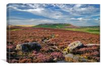 Approach to Higger Tor                      , Canvas Print
