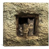 It is warm together, Canvas Print
