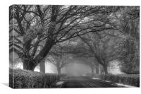 Misty Road, Canvas Print