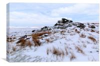 Winter Bodmin Moor, Canvas Print