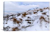 Stowes Hill Winter, Canvas Print