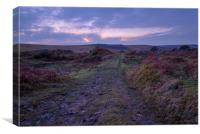Moorland Mystique, Canvas Print