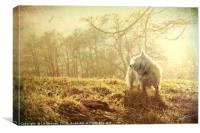 Mystic Westie for West Highland White Terrier Dog , Canvas Print