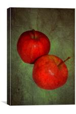 Two red apples.., Canvas Print