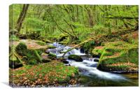 Golitha Falls At Autumn, Canvas Print