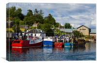 Oban Harbour  , Canvas Print