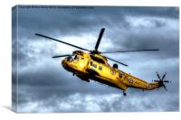 Search And Rescue, Canvas Print