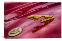 Car Emblem, Canvas Print
